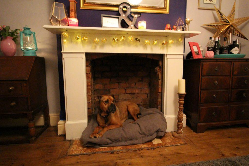 Making Dog Bed Corner Fireplace