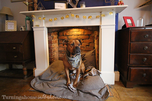 Updated How To Make A Dog Bed In A Fireplace Turning A