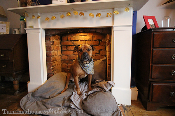 Turn Fireplace Into Dog Bed